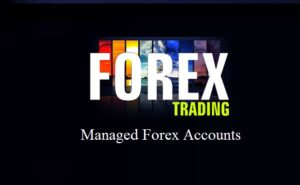 Read more about the article Best Managed Forex Accounts