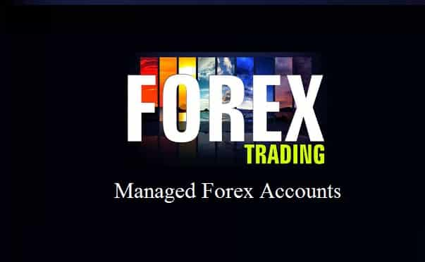 You are currently viewing Best Managed Forex Accounts