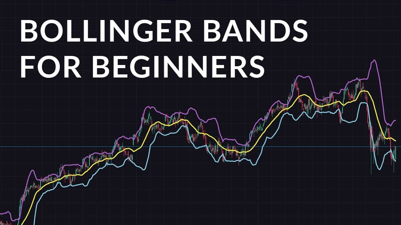 You are currently viewing How to Use Bollinger Bands