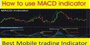 Read more about the article How to Use the MACD Indicator